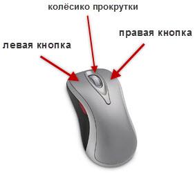 kompyuternaya_mysh